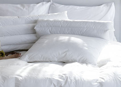 Sealy Bedding Collection